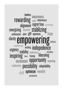 Transition's Positive Attributes from Rossetti's Research
